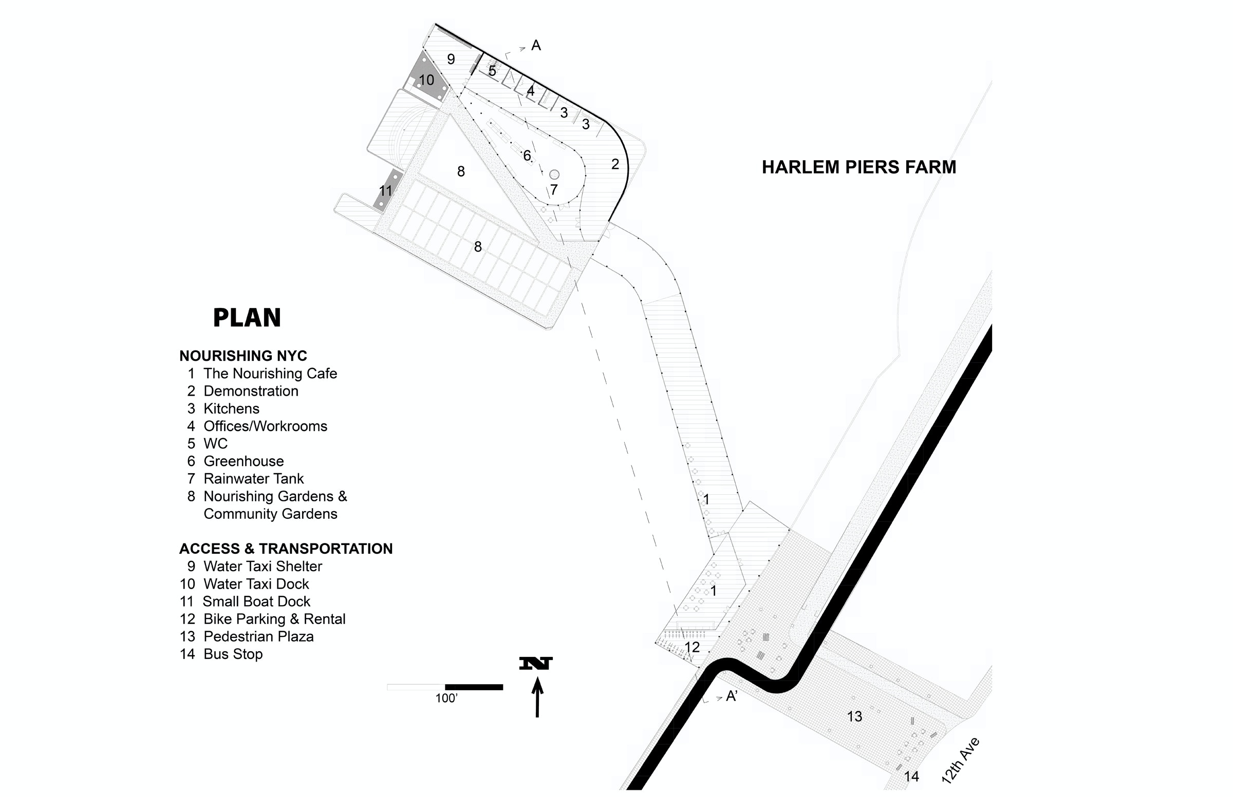 harlem piers farm   cultivating connections