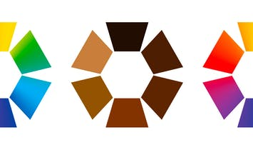 Archinect adds diversity identification options to firms and jobs