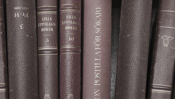 Bookshelf Owl Jonte C O A H O C Archinect
