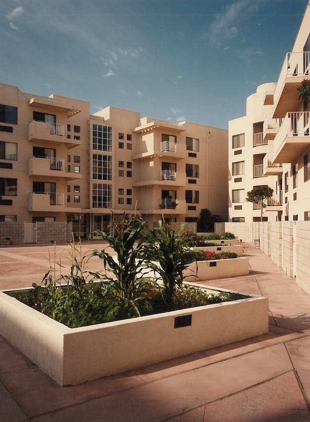 Courtyard offers vegetable gardens and extensive space for tai chi
