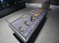 Artifact Display Case System