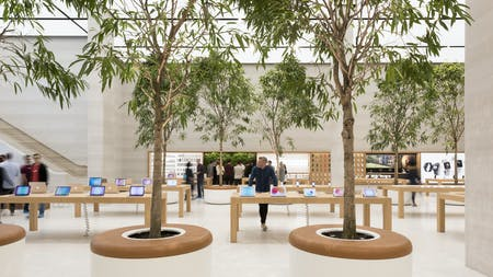 Apple Store, London, by Foster + Partners, Photo by Nigel Young