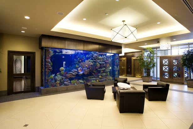 Vantage Waterfront - Designed and detailed high end lobby and law offices in building.