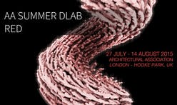 AA Summer DLAB :: RED is now accepting applications until July 20