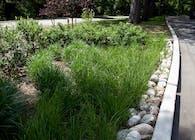Asst Landscape Architect NYCDPR
