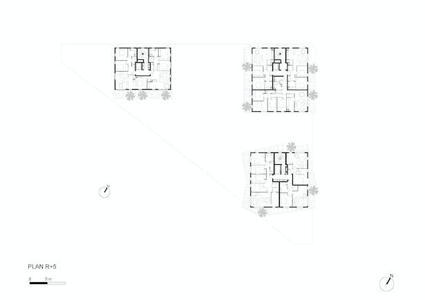 Plan R+5