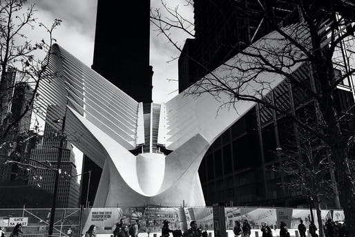 Citation Award: 911 Memorial, David Mordoch