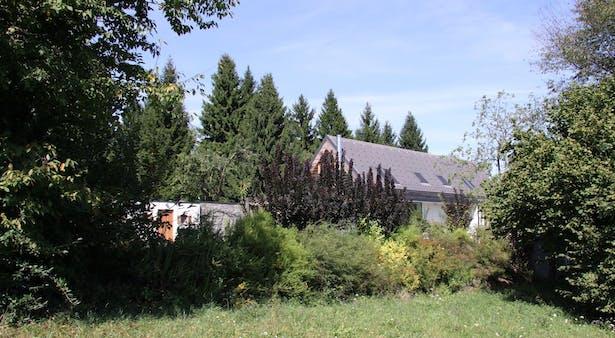 House A, landscape