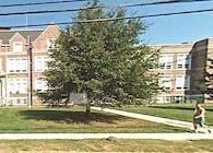 Bound Brook High School