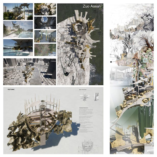 In Dialogue with Nature: Architecture for the Post-Anthropocene. Tutored by: Claudia Westermann. XJTLU, ARC304, FYP Studio 2019-20. Work by Zuo Annan.