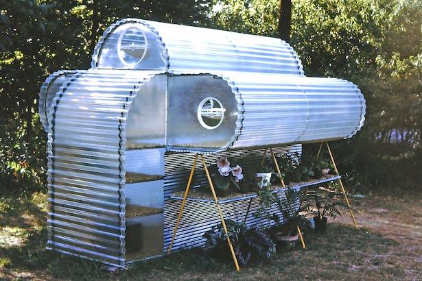 Small backyard greenhouse 1973.