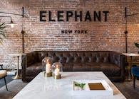 Elephant V.C.