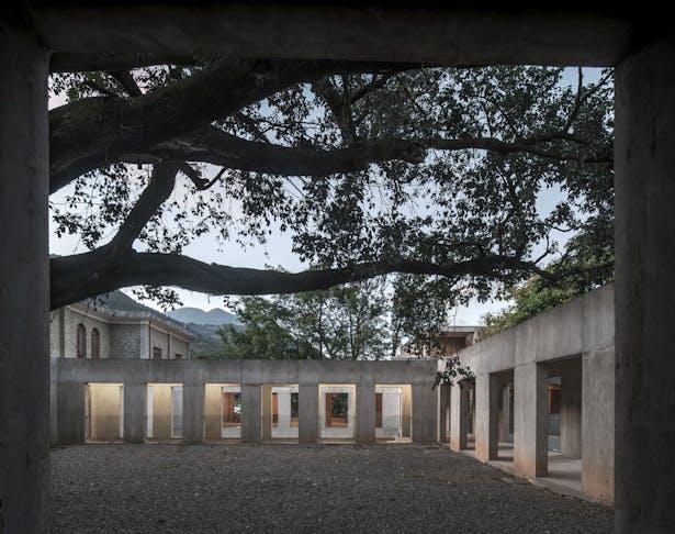 Tree Courtyard © Su Shengliang