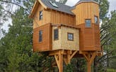 Want to become a treehouse designer? There's a job for that