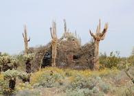 The Nest - Shelter for the Sonoran Desert