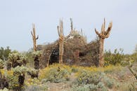 The Nest - Shelter for the Sonoran Desert
