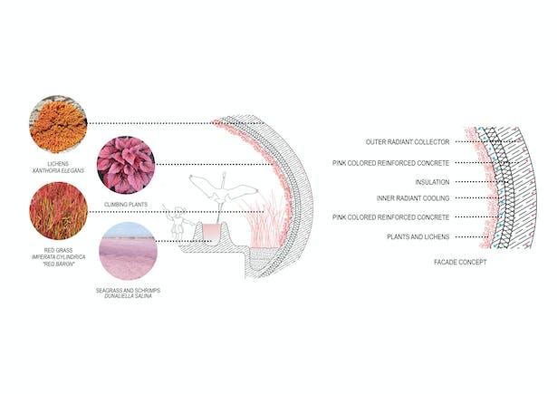 Facade Concept petrjanda/brainwork