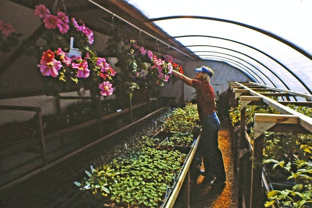 Inside the main greenhouse and the mobile platform.