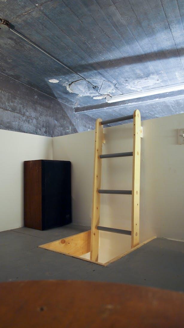 bedroom loft ladder