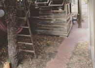 Melbourne shed