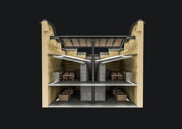 Cross section rendering