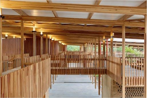 Eucalyptus structural beams Image © Leonardo Finotti
