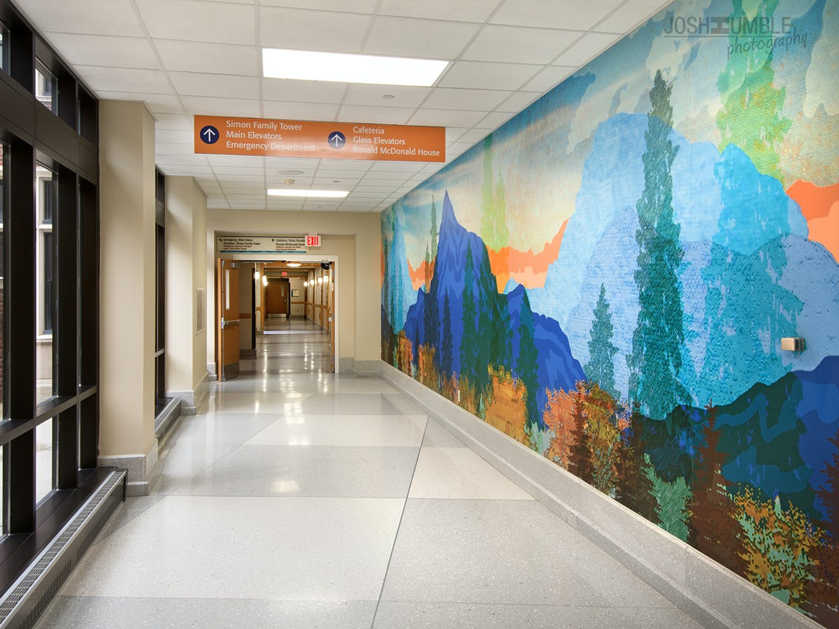 riley hospital for children wall murals