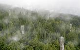 "Tulane Graduate Jacob Smiley Creates ""Symbiotic Design Strategies"" for Redwood Conservation"