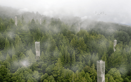 Restorative Forestry by Jacob Smiley.