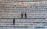 How to use reading to find mentorship when you have no job