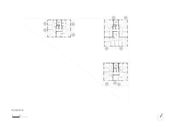 Plan R+6