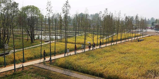 Landscape of the Year Winner 2017: Turenscape, Peasants and their Land: The Recovered Archaeological Landscape of Chengtoushan, Lixian County, China.