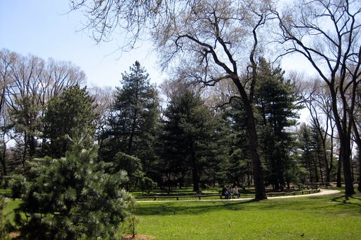 View of the Arthur Ross Pinetum, where Seneca Village was once located. Image courtesy of Flickr user Wally Gobetz.