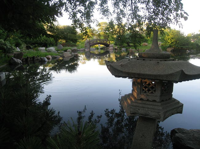 The Osaka Garden in Jackson Park. image via wikimedia.org