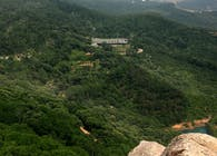 A villa in Rizhao green tea belt