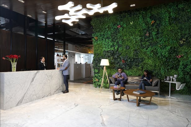 Reception Area: The plush reception welcomes warmly, with its righteous infusion of a modern interior with an al-fresco spirit rendered by the large green wall. The muted colours of grey, white along with walnuts used in the décor, set the right canvas for the green wall.