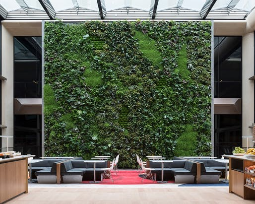 Living wall. Photo: James Newton.