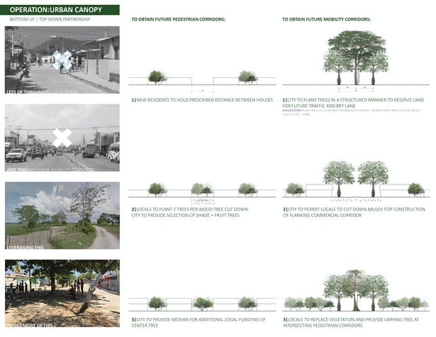 Implementation strategy. To provide the necessary shade in a Caribbean context set to rapidly expand, existing vegetation is strengthened with a systematic planting of the dry forest and other trees to hold space for mobility corridors and pedestrian streets