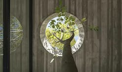 Biophilia: 10 fresh examples of nature and architecture coexisting harmoniously