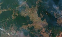 The Amazon rainforest is doomed