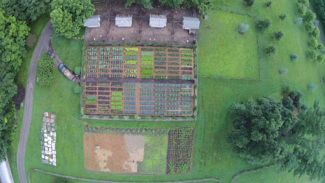 An aerial photo of Martha Stewart's farm in Bedford, New York, taken with her drone. Image via time.com.