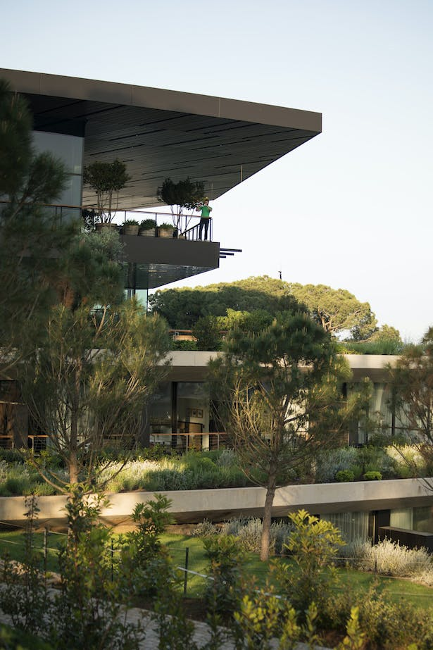 Over 10000m2 of greenery cover the entire hotel