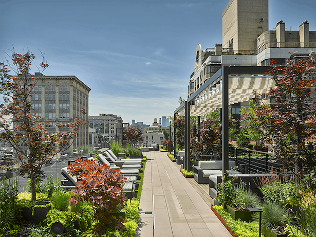 The rooftop features abundant greenery, including 20-foot trees in the center court.