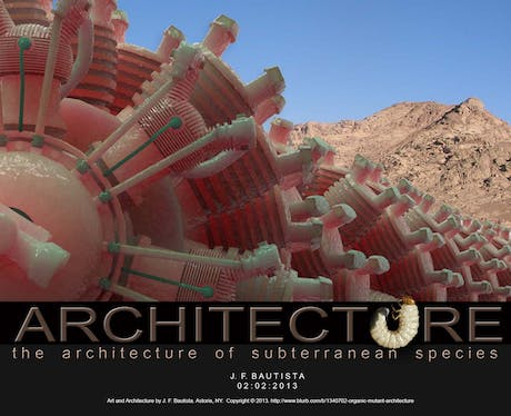......Architecture of subterranean species - Wasp Engine
