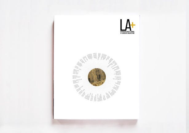 LA+ Risk Issue #6