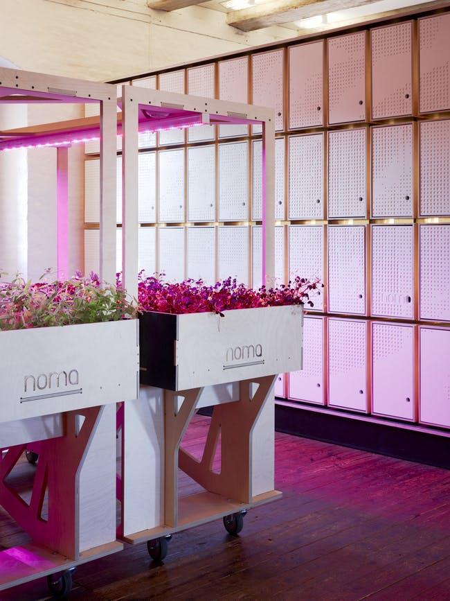 NOMA Lab by 3xn architects photo © Adam Mörk