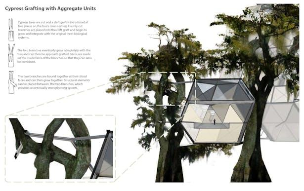 //building system