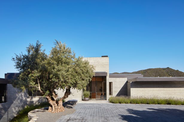 Many of the home's rooms are located on a lower level which daylights onto the downslope side of the house. This modest massing arrangement allows for neighboring properties to see over the roof of the home. (Roger Davies Photography)