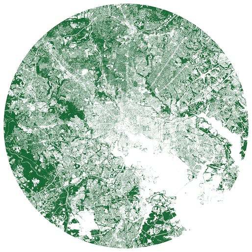 Baltimore's trees mapped. Image: Tim Wallace/Descartes Labs