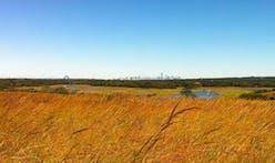 Transforming Freshkills Park from Landfill to Landscape